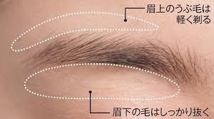「眉毛が整っている」の画像検索結果