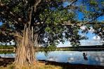 imagem de Lagoa Santa Minas Gerais n-17