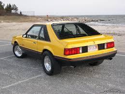 1979 ford mustang cobra Maintenance/restoration of old/vintage ...