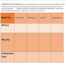Solved 5 Movement Analysisanalyze The Walking Gait As It