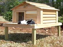 Cat House Plans Outdoor Insulated Diy