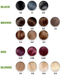 Garnier Color Naturals Shades Chart Garnier Color Sensation Hair Color Cream 5 0 Chocolate Therapy Medium Natural Brown 3 Count