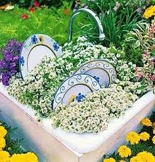 kitchen sink planter how fun sweet alyssum and very cool