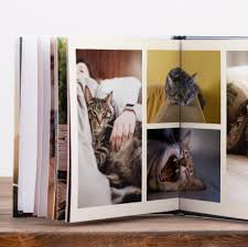 Animal Photo Albums 16 Pet Photo Album Ideas Perfect For All Animal Lovers