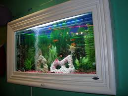 what about wall mounted fish tanks