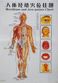 China Trigger Points Chart Massage Reflexology Chart