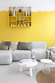 Painting Wall For Living Room 25 Best Ideas About Grey Wall Paints On Pinterest Grey Interior