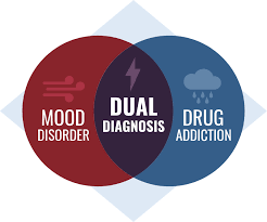 Drugs Venn Diagram Substance Abuse And Anxiety Disorders Panic Attacks Drug