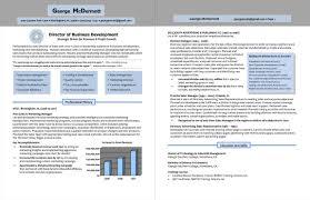 International Business Development  Resume sample  Awesome executive     VisualCV