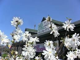 garden center nj. Laurel Oak Garden Center Mill Road Medford Nj