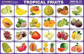 tropical fruits.  Tropical Tropical Fruits Chart With