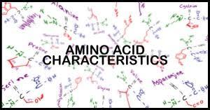 Mcat Amino Acid Chart Understanding Amino Acid Side Chain Characteristics For The
