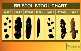 Bristol Stool Chart Type 6 16 Ways To Achieve A Healthy Poop Drjockers Com