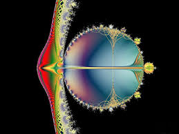 """Résultat de recherche d'images pour """"fractale dans le vivant- image"""""""