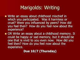 marigolds essay essay for student student essays community service essay student paper zipper essay
