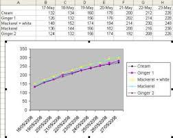 Maine Coon Weight Graph Ragdoll Cat Weight Chart Cat Weight