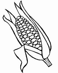 Small Picture Corn Stalk Coloring Pages Coloring Home