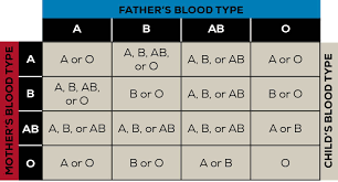 Different Blood Types Chart How Do Blood Types Work Oneblood