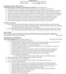 Summary On A Resume Example Best Of Professional Summary Examples For Resume Template Customer Service