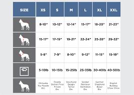 Size Chart Silver Paw