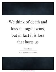 Loss Of A Brother Quotes Inspiration Death Of A Twin Brother Quotes Quotes