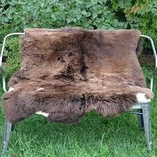 brown sheepskin rug x genuine or sofa throw chocolate brown sheepskin rug long wool extra large
