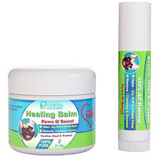 Top 5 Best Remedies for Dog's Dry Skin, Paws, Nose or Itchiness