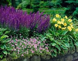 Small Picture Best 25 Herbaceous border ideas on Pinterest Garden inspiration