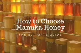 How To Choose Manuka Honey The Ultimate Guide Manuka Me