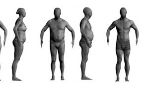 Normal Human Body Weight Chart In Kg Experts Slam Use Of Bmi And Reveal How You Can Work Out If