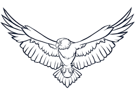 bald eagle template bald eagle coloring page free printable coloring pages