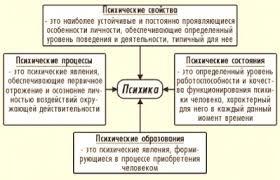 Психика это что такое Психика определение Психология НЭС Психика свойства процессы состояния психические образования