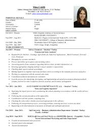 100 Professional Curriculum Vitae Samples Best Professional
