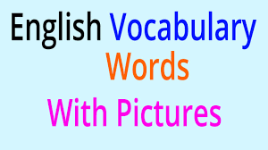 Words With Photo English Vocabulary Words Learn English Vocabulary With Pictures