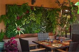 original dining room decorated with a vertical indoor garden marvelous wall decorated with plants