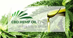 Image result for cbd oil in california