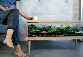 terrarium furniture. View In Gallery Instructables How To Make A Terrarium Table Furniture Decoist