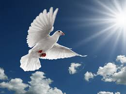 the charismatic gifts of the holy spirit the seven gifts of the holy spirit