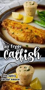 Air Fryer Catfish - easy recipe in 2020 ...