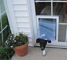 security boss pet doors in glass
