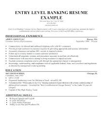 Summary Examples For Resume Custom Resume Sample Summary Resume Profile Summary Example Here Are Resume
