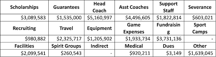 should student athletes get paid economics student society of the total amount spent on scholarships compared head coach salaries indicates a colossal discrepancy between how much students and coaches receive