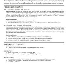 Government auditor resume