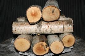 log set with vented g peterson birch fireplace logs real fyre inch white birch gas log