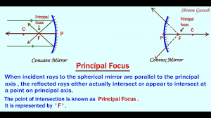 Principal Of Light Define Principal Focus Of A Spherical Mirror Light Refleaction And Refraction Class 10 Science
