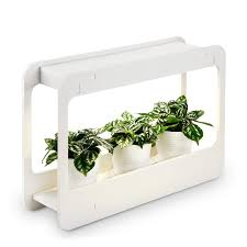 Led Herb Grow Light Details About Plant Grow Led Light Kit Indoor Herb Garden W Timer Growing Lights Fixture New