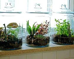 how to make an indoor herb garden. How To Make Indoor Herb Garden Kit Cute Easy An