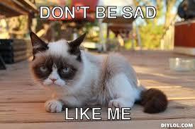 Grumpy Cat Meme Generator - DIY LOL via Relatably.com