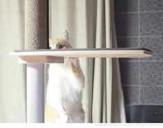 wall mounted cat tree thor scandicat. Modern Wall Mounted Cat Tree From Scandicat - Top Of The Stairs? | Kitty Ideas Pinterest And Thor