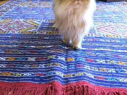 good area rugs for dogs rug designs